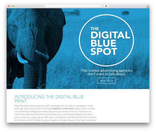 WordPress theme Divi - digitalbluespot.com