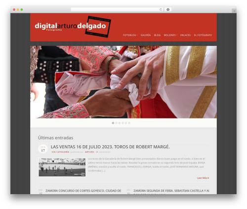 Acoustic WordPress theme - digitalarturodelgado.com