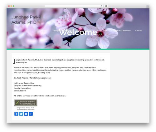 bizzy WordPress theme - drparkadams.com