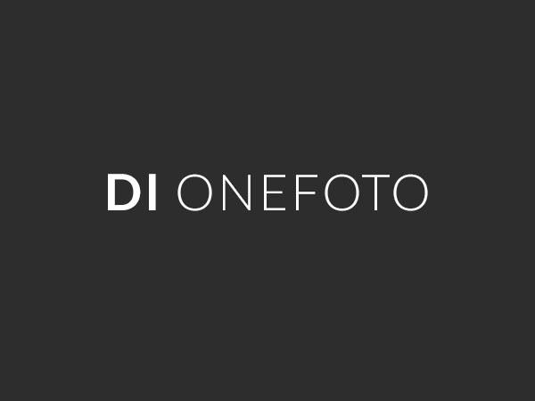 DI Onefoto WordPress theme