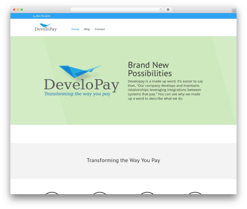 WordPress theme Divi - developayment.com