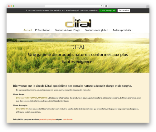 Divi WordPress pizza theme - difal.com