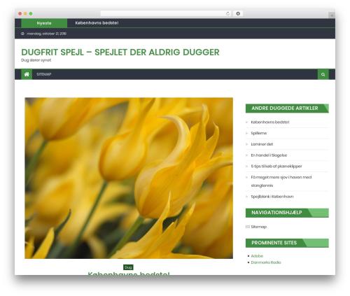 Eggnews template WordPress free - dugfritspejl.dk