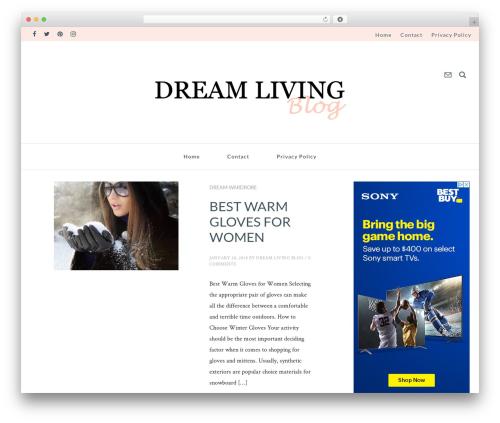 glossy WordPress blog template - dreamlivingblog.com