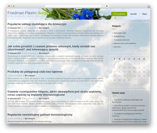 Best WordPress theme Eco Friendly Lite - friedmanplasticsurgery.com
