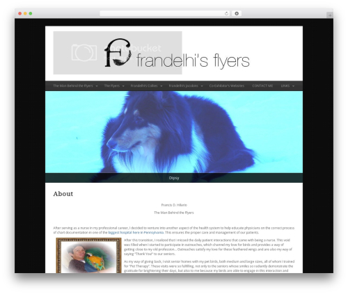 WordPress website template Minimal Xpert - frandelhisflyers.com