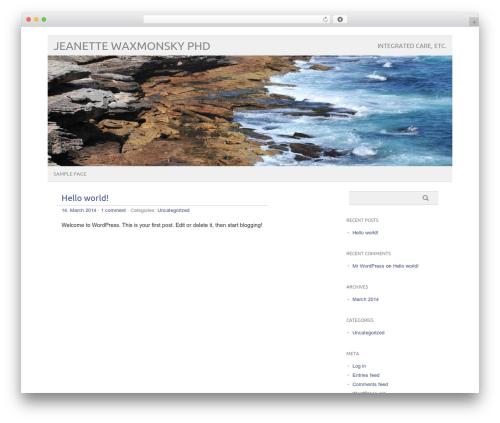 WordPress theme picolight - drjnetx.com