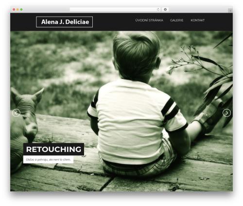 Focal WordPress theme design - deliciae.cz