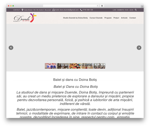 Theme WordPress Fitnes, Sport, Gym - duende.ro