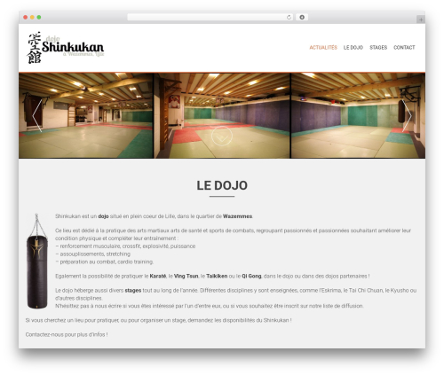 AccessPress Parallax WordPress template free - dojo.shinkukan.fr