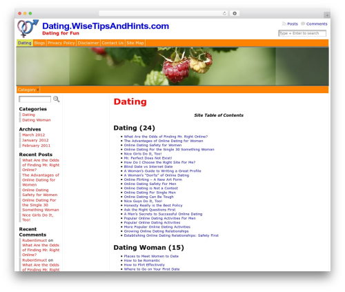 Free WordPress Site Table of Contents plugin - dating.wisetipsandhints.com