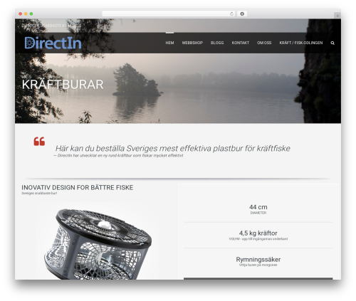 Leisure WordPress theme - directin.se