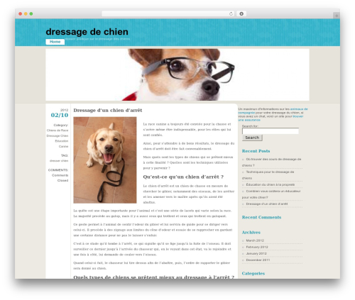 Best WordPress template FloatingLight - dressageduchien.com