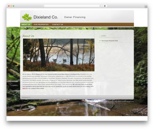 Free WordPress WordPress Hit Counter plugin - dixielandco.com