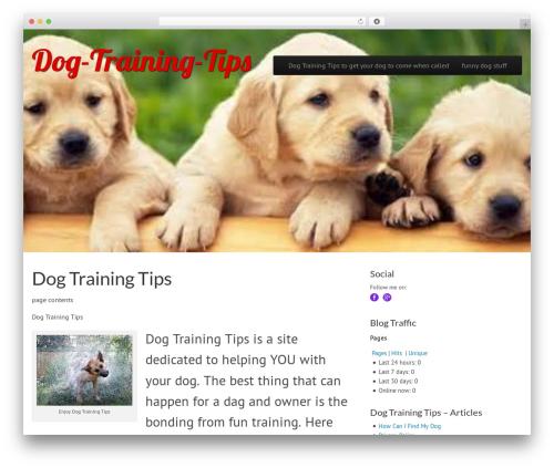 Free WordPress Simple Follow Me Social Buttons Widget plugin - dog-training-tips.biz