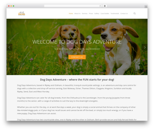 Salient theme WordPress - dogdaysadventure.co.uk