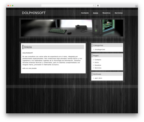 WP theme zeePersonal - dolphinsoft.org