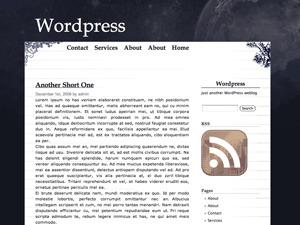 Cloudy Night WordPress blog template