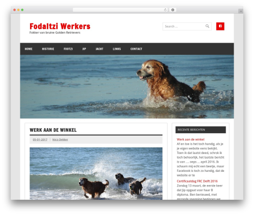 Dynamic News WordPress news template - fodaltziwerkers.nl