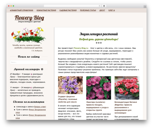 Rakiya theme WordPress free - flowery-blog.ru