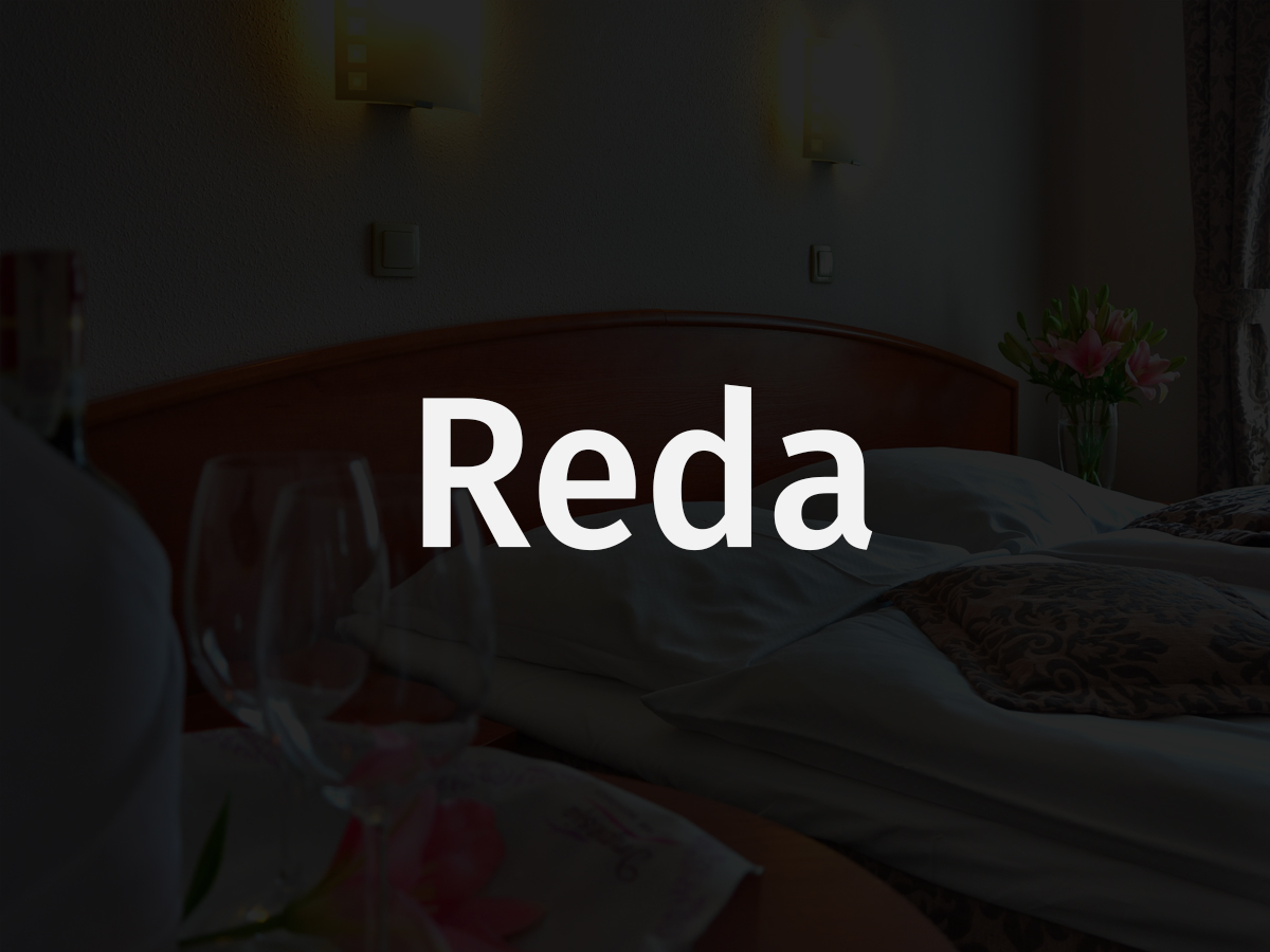 Reda business WordPress theme