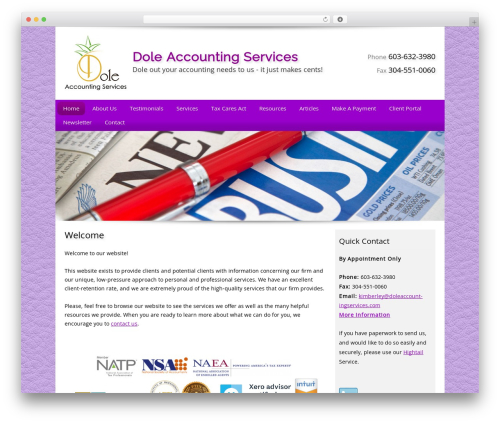 Customized top WordPress theme - doleaccountingservices.com