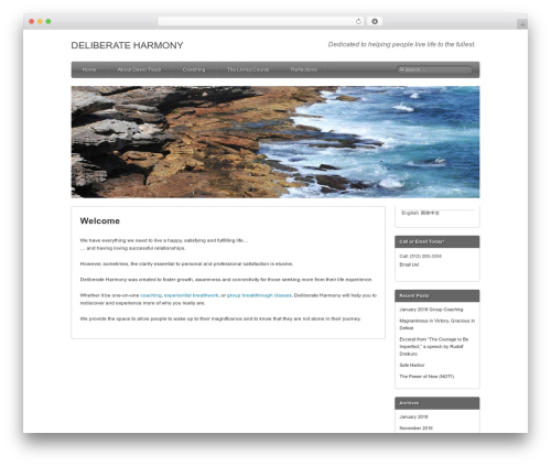 Best WordPress template Silverclean Lite - deliberateharmony.com