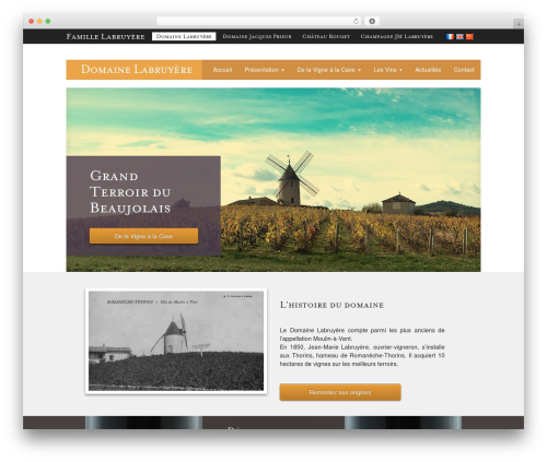 WordPress wp-rss-multi-importer plugin - domaine-labruyere.com