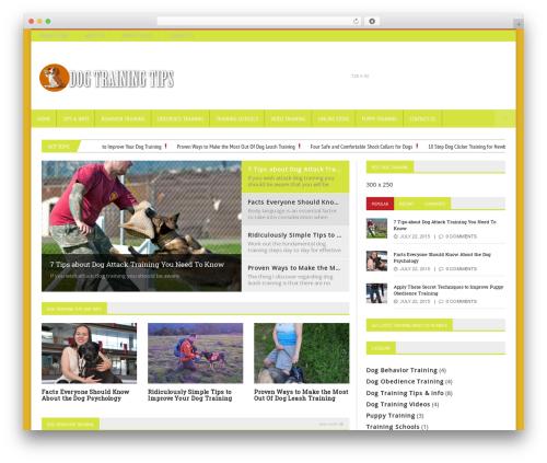 Best WordPress theme Novomag Premium Theme - dogtrainingmag.com