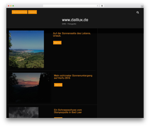 Temptation free WordPress theme - dalilux.de