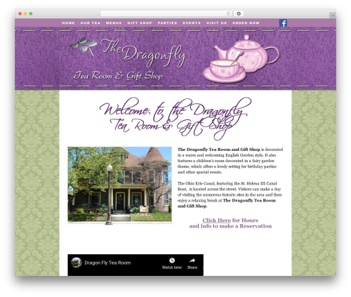 Thesis best WooCommerce theme - dragonflytearoom.com