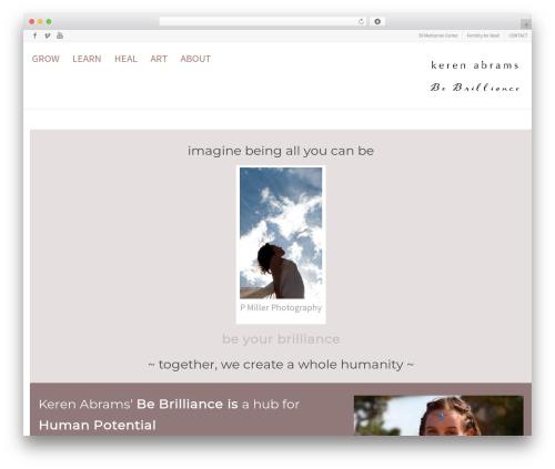 Flexform top WordPress theme - kerenabrams.com
