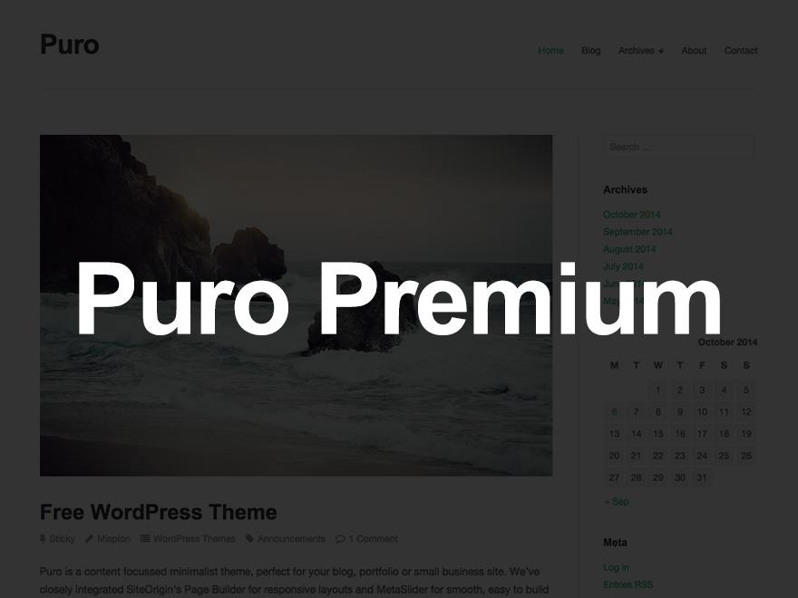 Puro Premium best portfolio WordPress theme