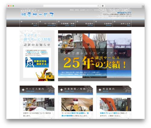 Vanguard Networks co,.ltd. 2011.04 WP template - keiai-haisetsu.com