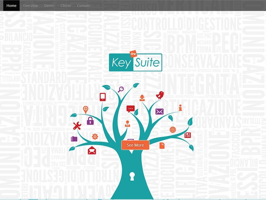 KeySuite Custom best WordPress template