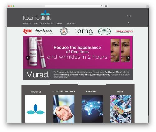 WordPress wordpress-social-stream plugin - kozmoklinik.com