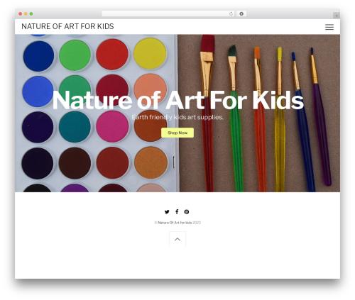 Themify Shoppe WordPress shop theme - kidspaintco.com