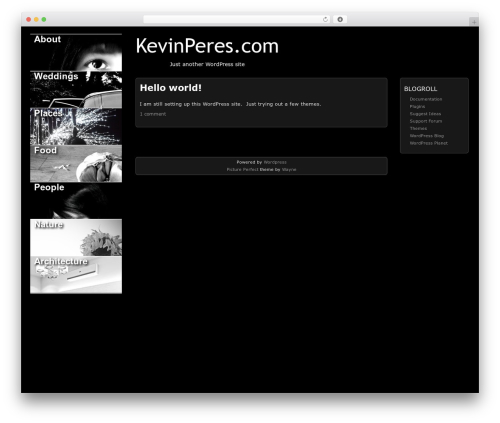 Picture Perfect best WordPress template - kevinperes.com