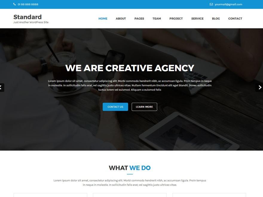 Standard Lite WordPress shop theme