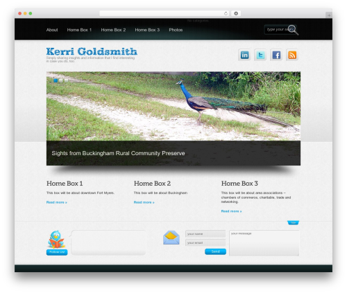 WordPress theme Boldy - kerrigoldsmith.com