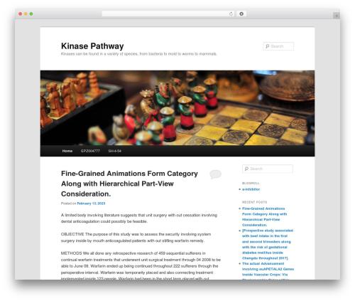 WordPress website template Twenty Eleven - kinasepathway.com
