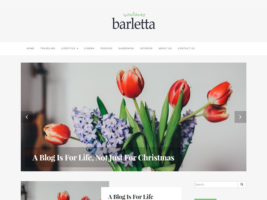Barletta free website theme