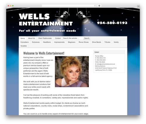 Best WordPress template Sample Child Theme - wellsentertainment.net