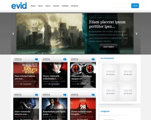 Best WordPress theme eVid