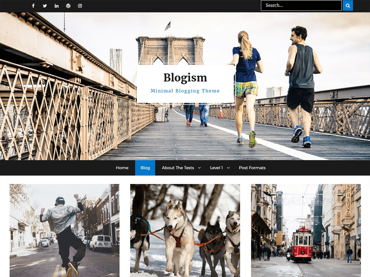 Blogism WordPress theme free download
