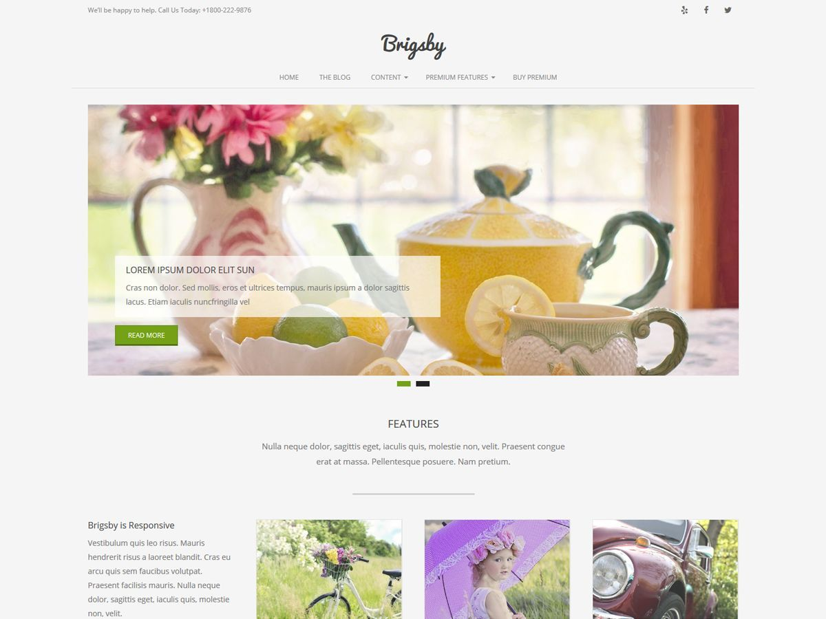 Brigsby business WordPress theme