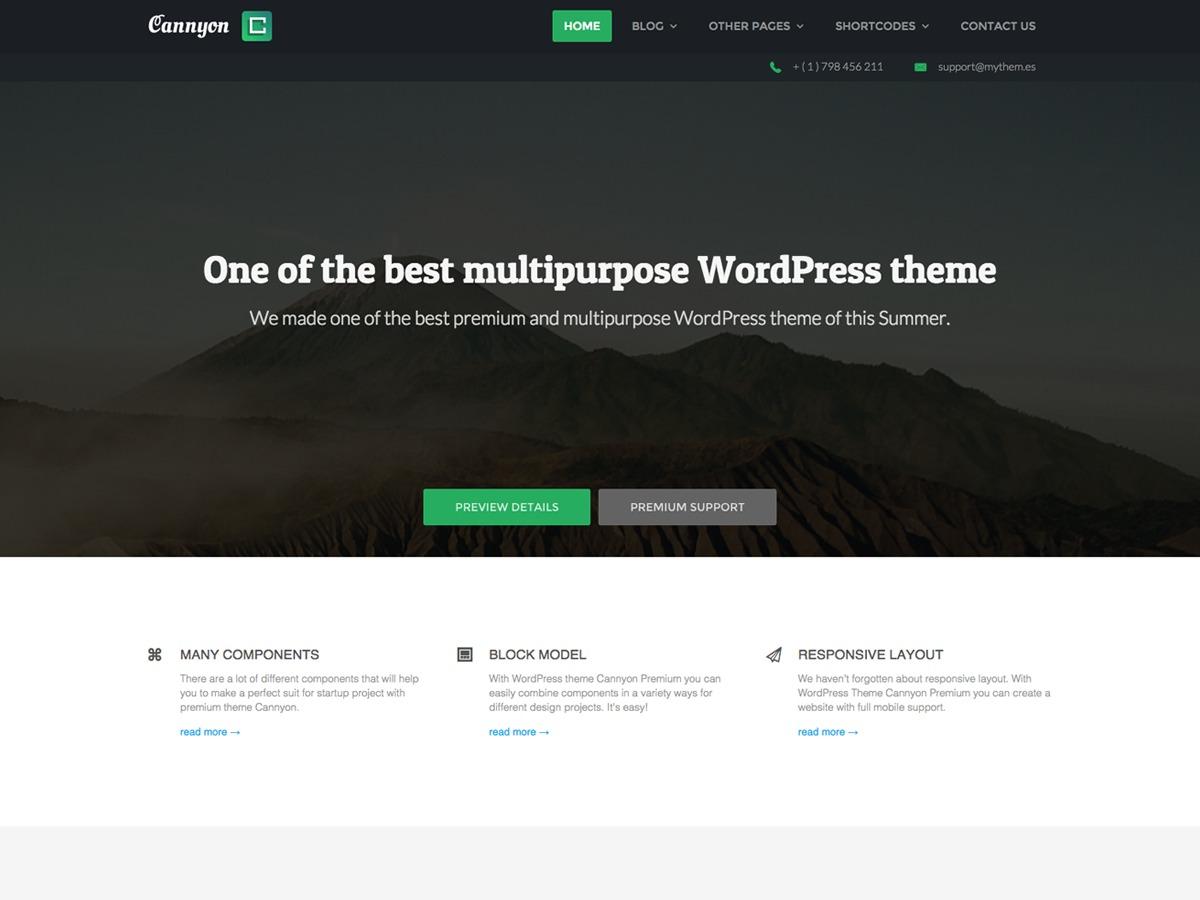 Cannyon_ WordPress theme image