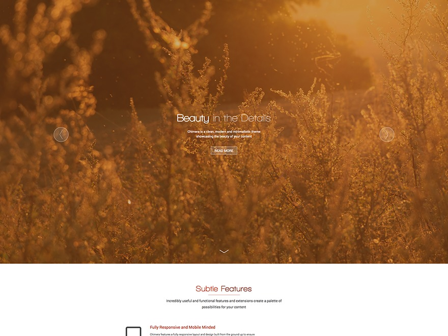 Chimera WordPress theme