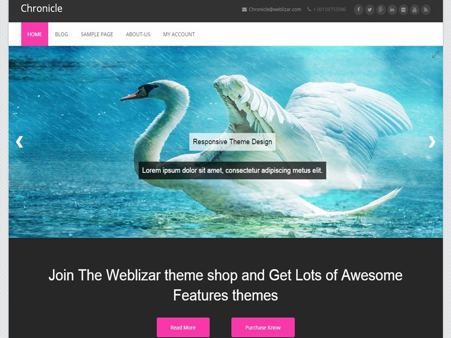 Chronicle free WP theme