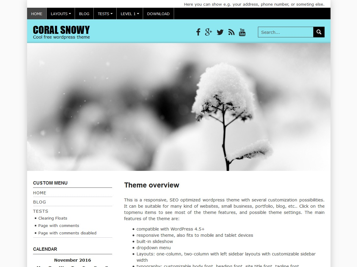 Coral Snowy free WordPress theme